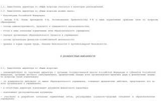 Должностная инструкция заместителя директора школы и его обязанности