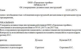 Приказ об утверждении должностной инструкции: образец в ДОУ, школе, на предприятии