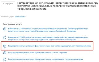 Как закрыть ИП через интернет на сайте Госуслуг?