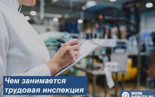 Функционирование и работа государственной инспекции по труду
