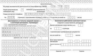 Декларация по НДС: инструкция по заполнению