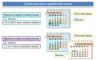 Порядок, место и сроки выплаты заработной платы по Трудовому кодексу РФ