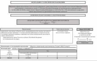 Отчет по форме П-4 (статистика): инструкция по заполнению, правила для НЗ