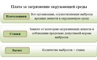 КБК (коды бюджетной классификации) для уплаты экологического сбора за НВОС