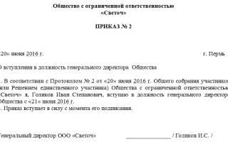 Приказ о назначении генерального директора: образец оформления для ООО и ИП