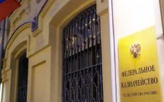 Казначейское сопровождение государственных и муниципальных контрактов
