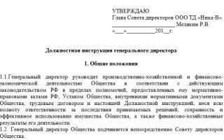 Пример должностной инструкции генерального директора ООО