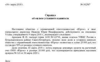 Справка об оплате уставного капитала ООО: образец, процедура уплаты