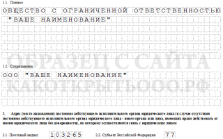 Образец заполнения новой формы P11001