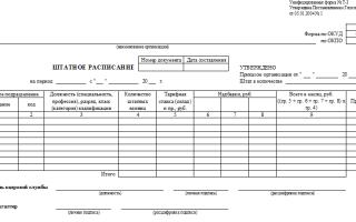 Как сделать и оформить выписку из штатного расписания: образец формы