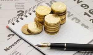 Налоговый календарь: сроки уплаты для ИП и ООО, период и порядок оплаты