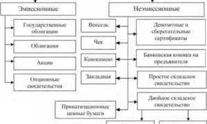 Понятие и виды ценных бумаг: классификация и характеристика