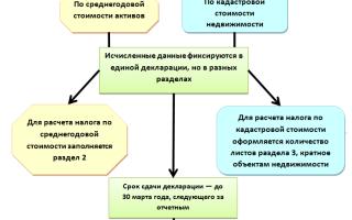 Декларация по налогу на имущество организаций: всё о сроках