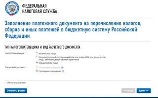 """Как заполнить """"платежку"""" онлайн на сайте ИФНС"""