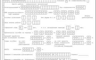 Правила заполнения и образец больничного листа