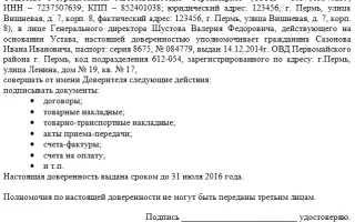Доверенность на подписание документов за генерального директора: образец