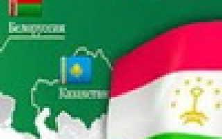 Когда Таджикистан войдет в Таможенный союз