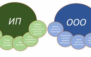 Плюсы и минусы ИП: стоит ли открывать ИП , какие существуют риски и преимущества